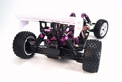 1/10 EP 4WD Off Road Buggy (Brushed, Ni-Mh)